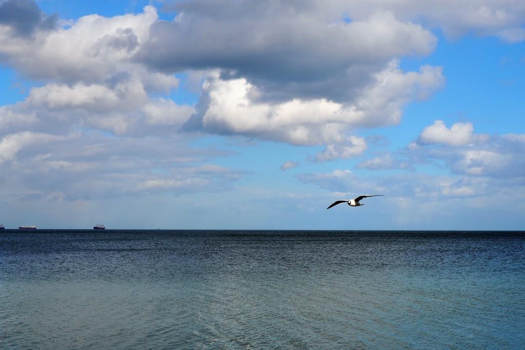 Pozdrowienia z Gdyni :)
