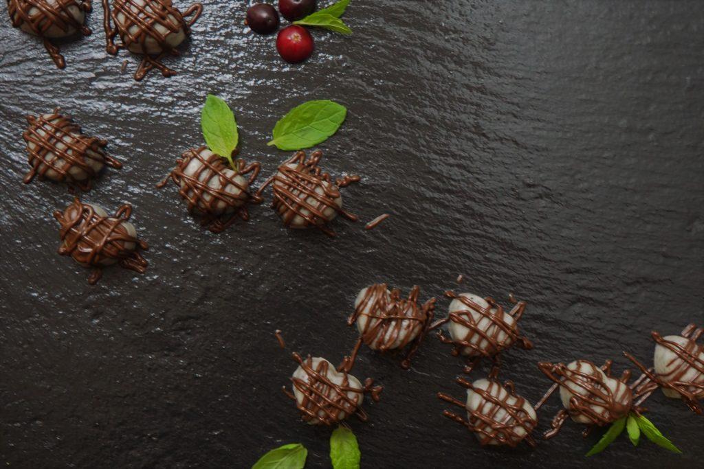 wegańskie kokosowe ptasie mleczko z chia i wanilią
