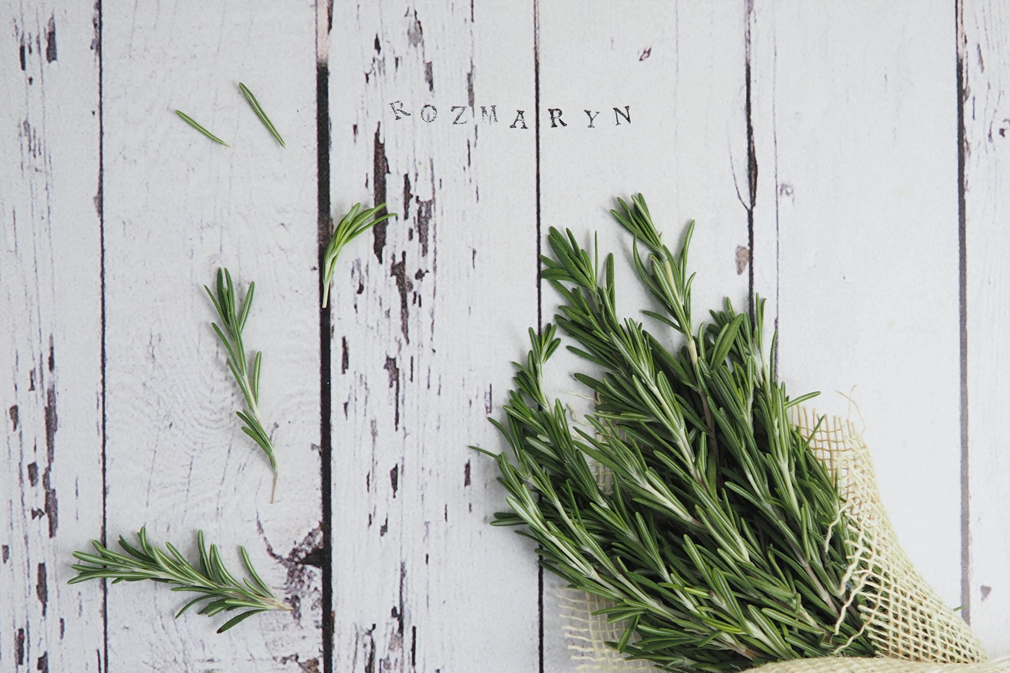 Rozmaryn – kulinarne zastosowania, prozdrowotne triki i dekoracje DIY