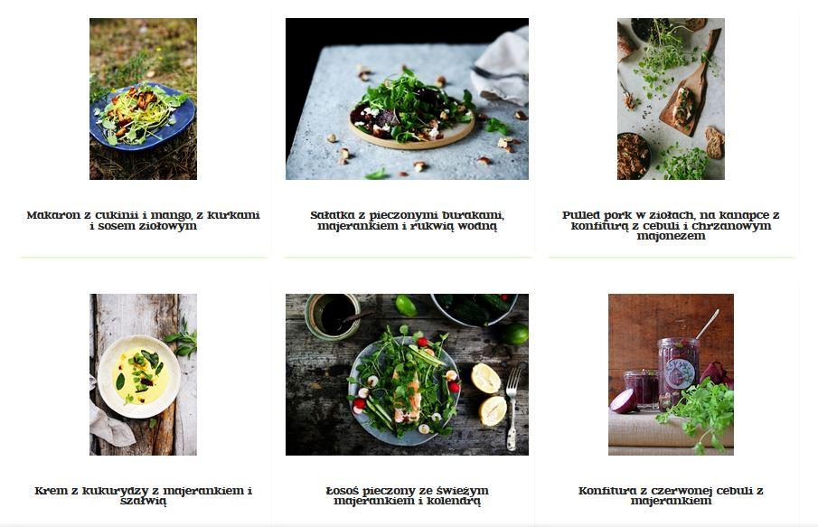 Przepisy baziółki na dania i napoje z majerankiem (kliknij zdjęcie)