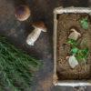 Wegański pasztet z soczewicy z grzybami, lubczykiem i rozmarynem