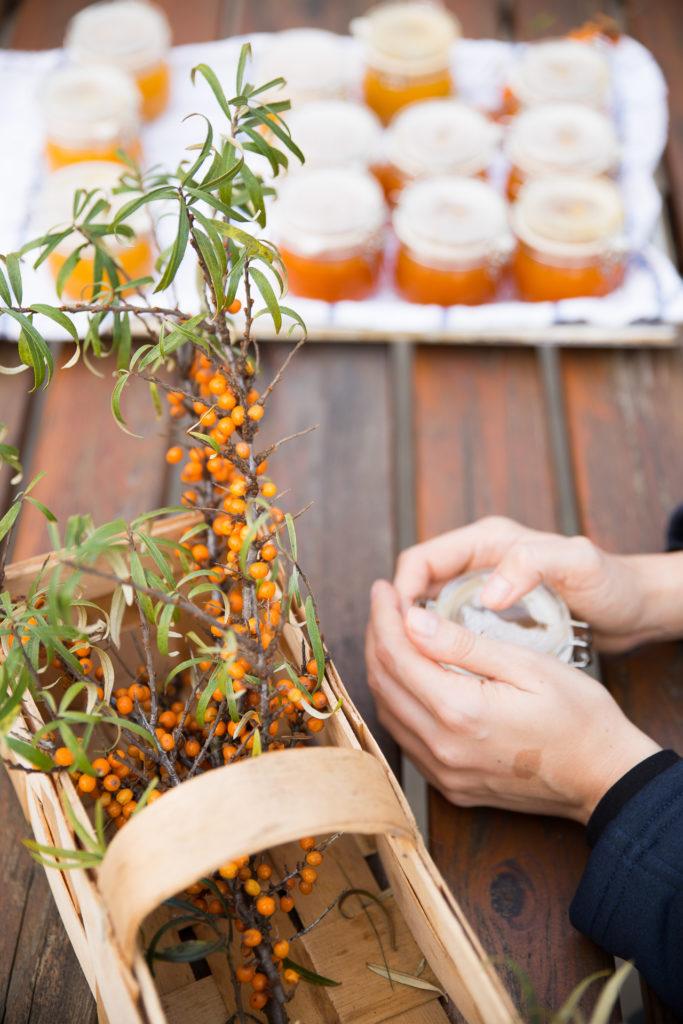 świeżo zebrany rokitnik doskonale nadaje się jako baza do przygotowania nalewek, dżemów i soków