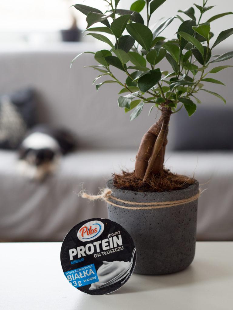 Zakupy Dietetyka: jogurt Protein naturalny (Pilos)