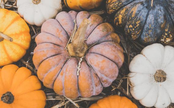 Co jeść jesienią, aby zachować zdrowie?